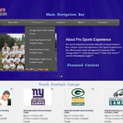 Welcome To The New Pro Sports Experience Website